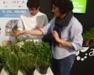 Alessandro,aiuto chef, studia erboristeria è incuriosito dalle piante spontanee