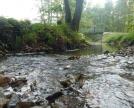Rio lungo il sentiero tra Annone e la sponda lacustre di Suello
