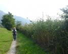 Primo tratto di sentiero da Isella ad Oggiono