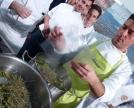 Il brodo d' erbe di montagna per un risotto con carpaccio celtico e gelato di caprino di Giancarlo Morelli