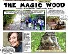 magicwood_1a