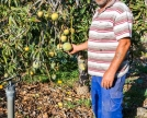 Alejandro-racconta-la-differenza-tra-Mangos-e-Mangas
