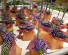 Raponzolo-melone-dolce-crudo