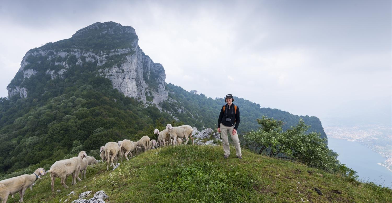 Dsc 1113 1500 exploratori della domenicaexploratori for Piani di fattoria del cottage