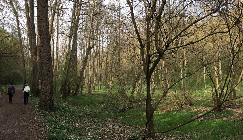 PanoramaGuercio3*_1500